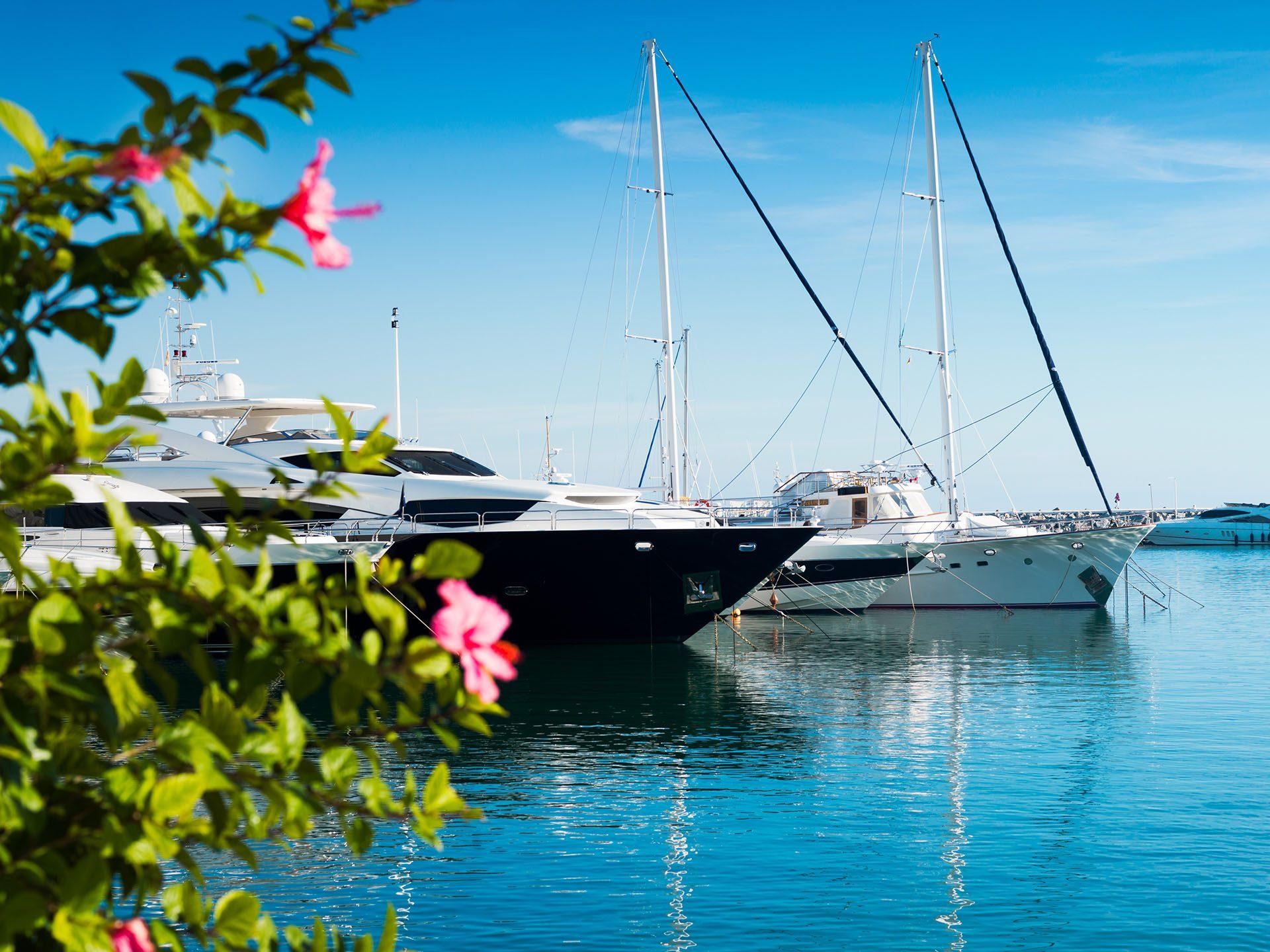 Puerto Deportivo Jose Banus, Marbella, Andalusia, Spain, Iberian Peninsula